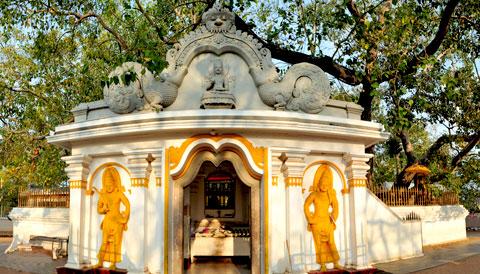 Sri Maha Boodhi Temple Sri Lanka