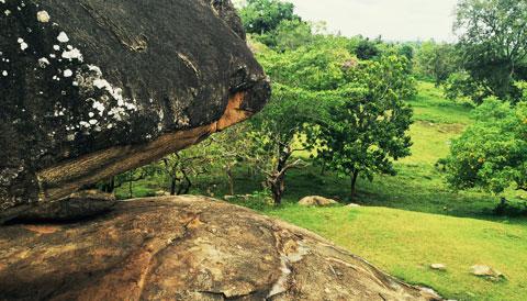 Vessa giriya Sri Lanka